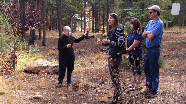 boulder-county-wildfire-partners-program